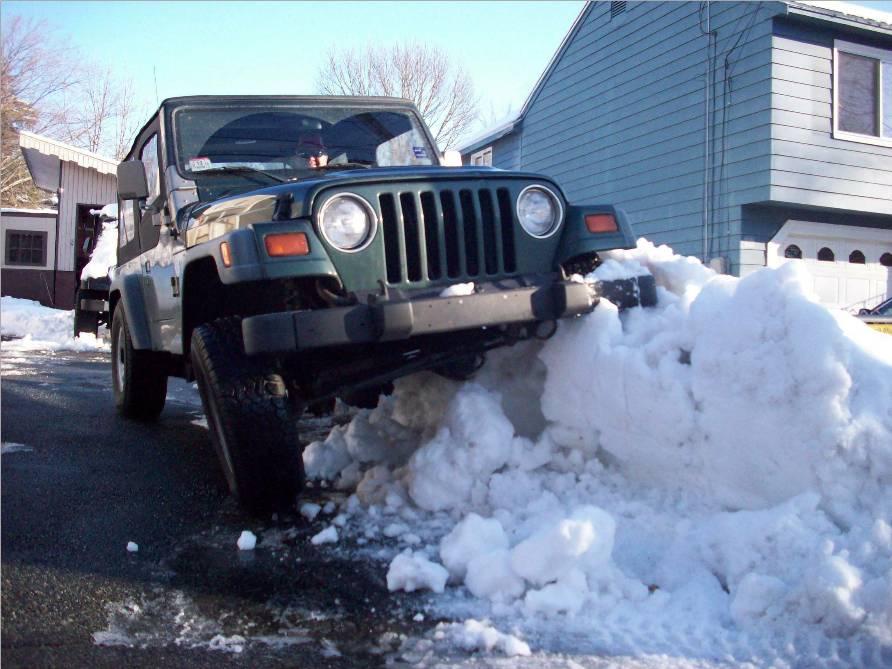 Dead snowbank